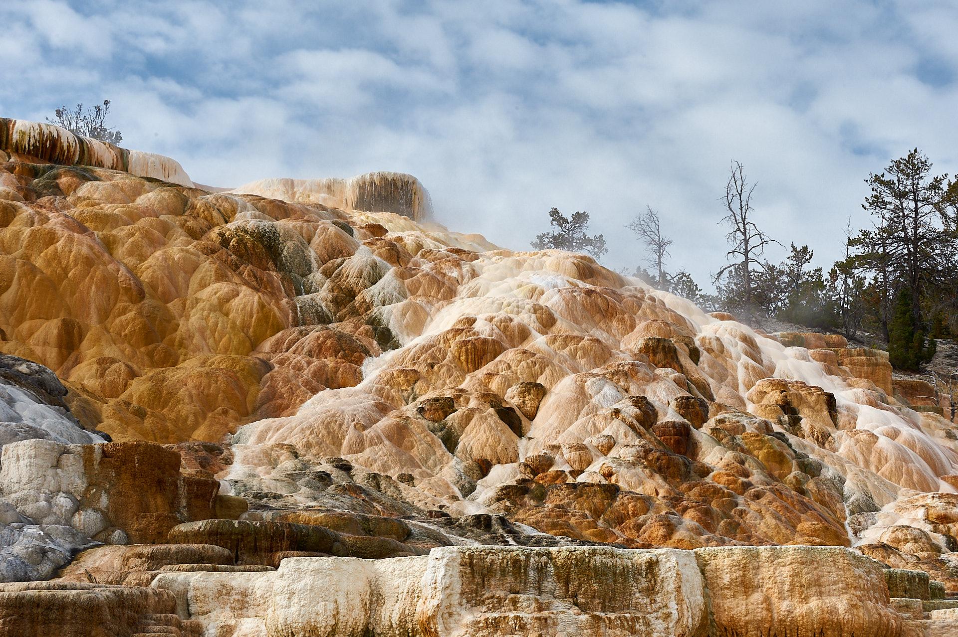 Die Palette Spring der Mammoth Hot Spring beeindruckt auf diesem Naturfoto durch ihre vielfältigen Farbschattierungen.Kamera: NIKON D3X Brennweite: 70mm 1/160 s bei Blende f/16.0