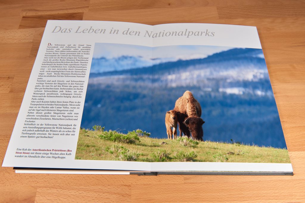 Eine Innenseite des Professional Line Fotobuchs von Saal Digital